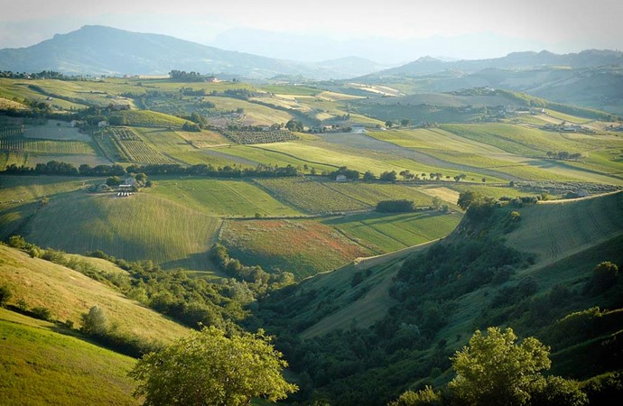 Immagine evento What to see in Friuli: three Ville Venete to visit