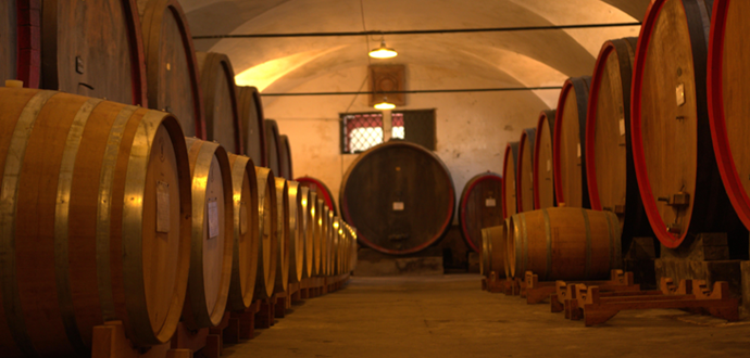 Wine cellars and gourmet products
